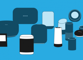 Voice Search Ranking Factors | The Basics